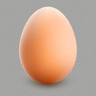 Nahaufnahme des braunen eies isoliert.