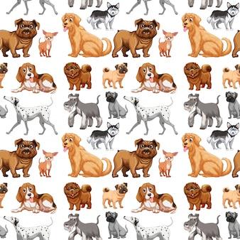 Nahtlose hunde