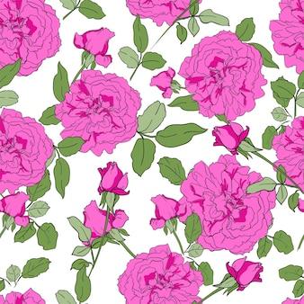 Nahtlose musterhand gezeichnete rosa pfingstrosen und rosenhintergrund der blumen