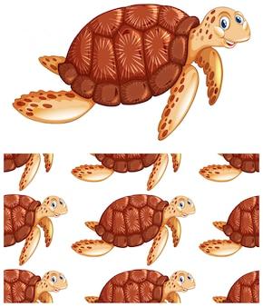 Nahtlose schildkröte