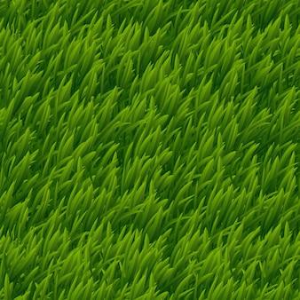 Nahtlose textur des grünen grasvektors. rasennatur, wiesenpflanze, natürliche naturillustration des feldes