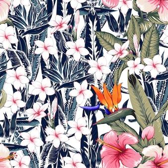 Nahtloser blumenmuster hibiscus, frangipani blüht abstrakten hintergrund.