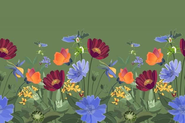 Nahtloser blumenrand. sommerblumen, grüne blätter. chicorée, malve, gaillardia, ringelblume, ochsenauge gänseblümchen. kastanienbraune, orange, gelbe, blaue blüten