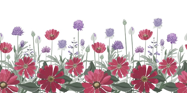 Nahtloser blumenrand. sommerblumen, kräuter, blätter. gaillardia, ringelblume, ochsenauge-gänseblümchen, rosmarin, lavendel, salbei, allium.