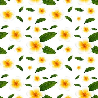Nahtloser hintergrund mit weißen plumeriablumen