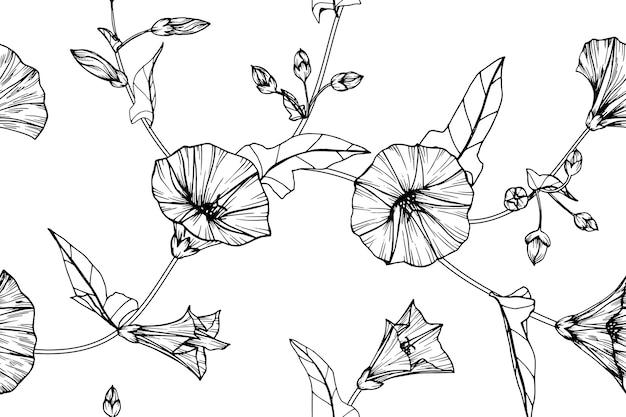 Nahtloser morgenglanzblumen-musterhintergrund.