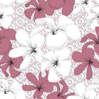 Nahtloser muster weißer frangipani blüht abstrakten hintergrund.