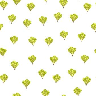 Nahtloser musterbündel mangoldsalat auf weißem hintergrund. minimalismus-ornament mit salat. zufällige pflanzenvorlage für stoff. design-vektor-illustration.