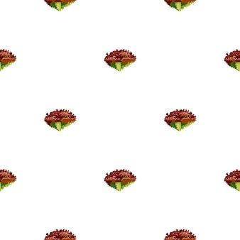 Nahtloser musterlola-rosensalat auf weißem hintergrund auch im corel abgehobenen betrag. einfache verzierung mit salat. geometrische pflanzenvorlage für stoff. design-vektor-illustration.