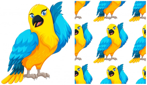 Nahtloser papagei getrennt auf weiß