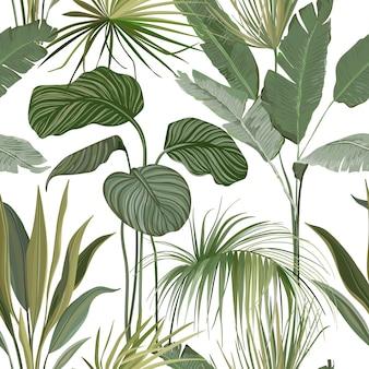 Nahtloser tropischer blumendruck mit exotischen grünen dschungel-philodendron-monstera-blättern auf weißem hintergrund. regenwald wildpflanzen wallpaper vorlage, naturtextil ornament. vektorillustration