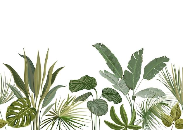 Nahtloser tropischer blumendruck mit exotischen grünen dschungelblättern auf weißem hintergrund. regenwald pflanzen wallpaper vorlage, natur textil ornament, philodendron monstera blumen vektor illustration