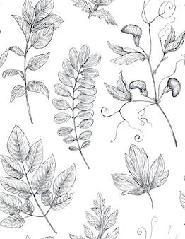 Nahtloses blumenmuster mit handgezeichneten mohnblumen und -blättern.