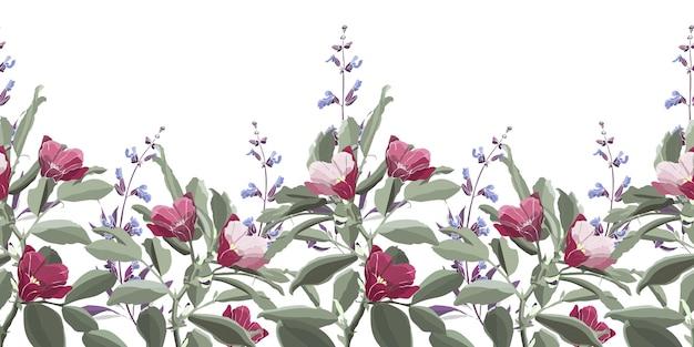 Nahtloses blumenmuster, rand. grünes laub, lila salbei, rosa und kastanienbraune blüten. wiesenblumen und kräuter lokalisiert auf einem weißen hintergrund.