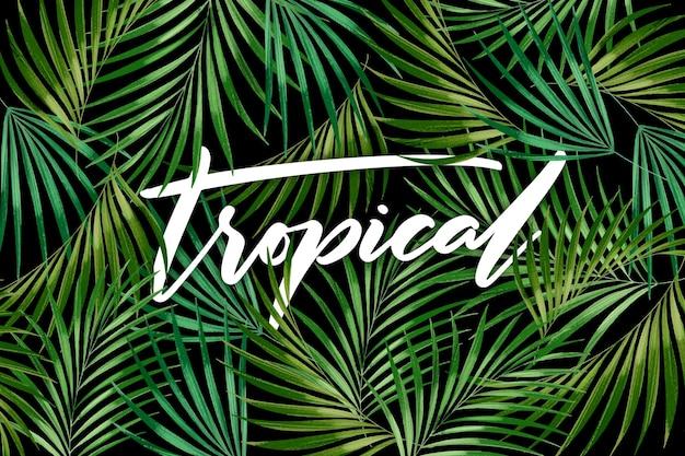 Nahtloses grün hinterlässt tropische beschriftung