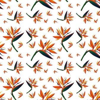 Nahtloses hintergrunddesign mit paradiesvogelblumen