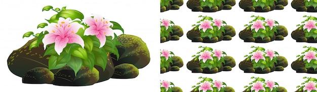 Nahtloses hintergrunddesign mit rosa lilienblumen auf felsen