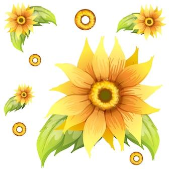 Nahtloses hintergrunddesign mit sonnenblumen