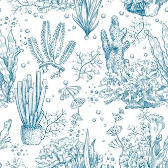 Nahtloses muster der algen. riffwasserpflanzen und -korallen, unterwassermeer und aquarienleben nautische japanische, chinesische skizzenvektortextur. illustration laminaria botanisches nahtloses nautisches muster