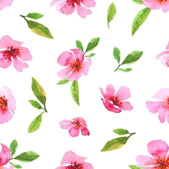 Nahtloses muster der aquarell-kirschblütenblume. sakura schöne frühlingsblumenschablone. bunte illustration lokalisiert auf weißem hintergrund. Premium Vektoren