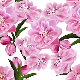 Nahtloses muster der kirschblüte auf weißem hintergrund.