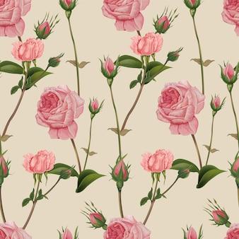 Nahtloses muster der rosafarbenen rose, retrostil