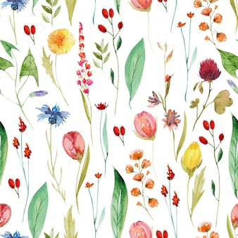 Nahtloses muster der verschiedenen sommerwildblumen des aquarells