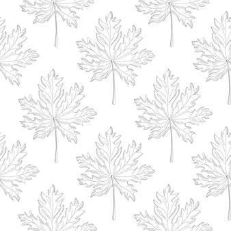 Nahtloses muster des geometrischen ahornblattes auf weißem hintergrund. monochrome blätter vintage tapete. gravierter stil.