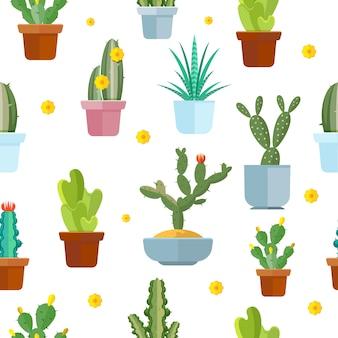 Nahtloses muster des kaktus. blühender kaktus auf weißer hintergrundillustration
