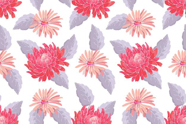 Nahtloses muster des kunstblumenvektors. rote und rosa astern und chrysanthemen mit grauen blättern auf weiß