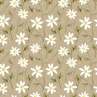 Nahtloses muster des weißen gänseblümchens