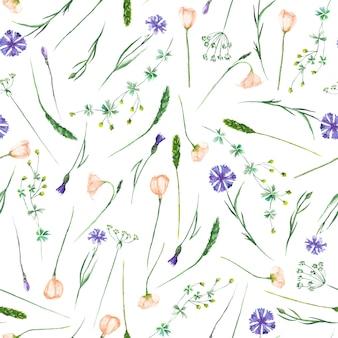 Nahtloses muster mit aquarellwildblumen und kornblumen