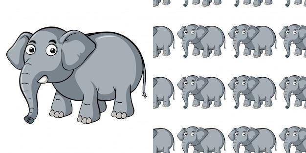 Nahtloses muster mit grauem elefanten