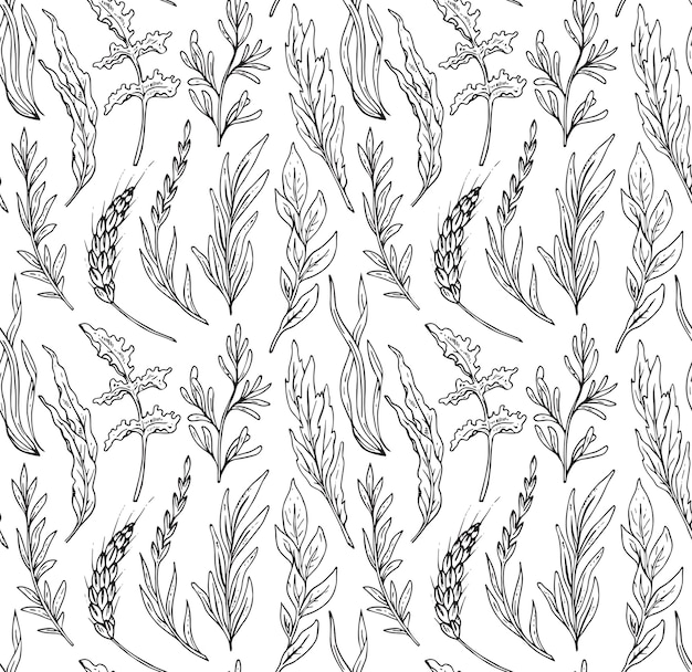Nahtloses muster mit handgezeichneten kräutern isolieren auf weißem hintergrund