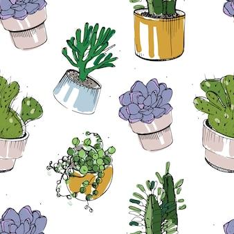 Nahtloses muster mit handgezeichneten sukkulenten und kakteen in töpfen. bunte illustration auf weißem hintergrund.