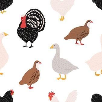 Nahtloses muster mit hausvögeln oder farmgeflügel - hahn, huhn, gans, ente, wachtel, truthahn