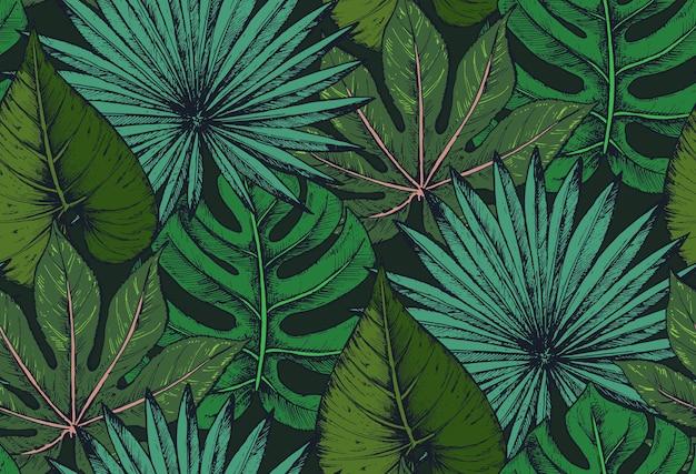 Nahtloses muster mit kompositionen von handgezeichneten tropischen palmblättern, dschungelpflanzen.