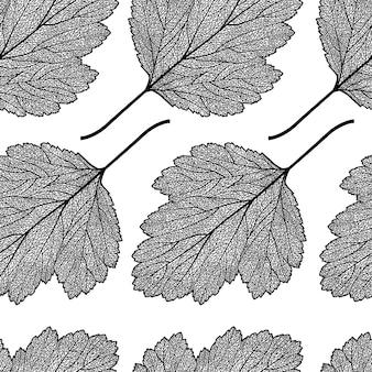 Nahtloses muster mit skelettierten weißdornblättern