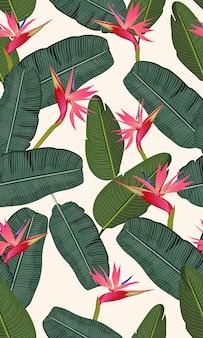 Nahtloses musterbananenblatt mit rosa paradiesvogel