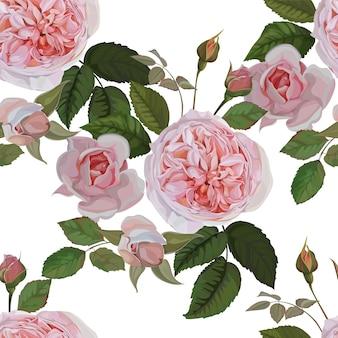 Nahtloses rosenrosa-muster auf weißem hintergrund