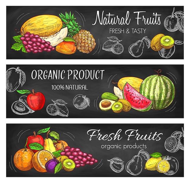 Natürliche früchte skizzieren ananas, zitrone, apfel und trauben mit melone.