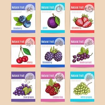 Natürliche früchte und beeren mit titeln. etiketten mit vektorskizze blaubeere, pflaume, erdbeere, kirsche, brombeere, schwarze johannisbeere, blaue trauben, himbeeren, weiße trauben