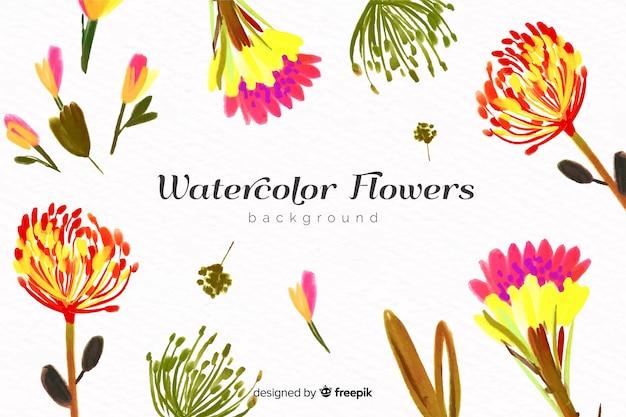 Natürlicher hintergrund mit aquarellblumen