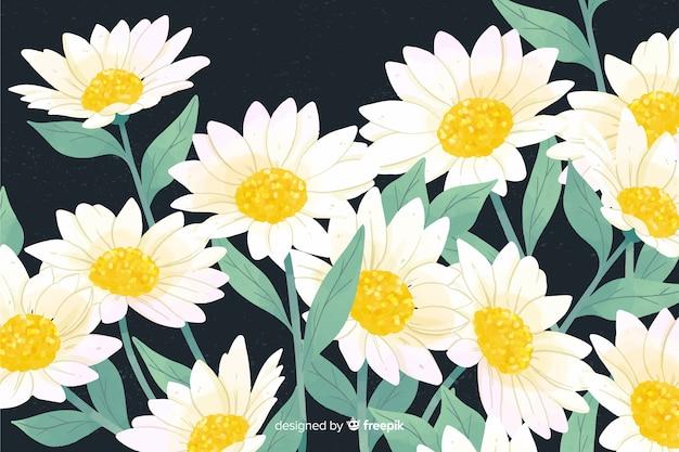 Natürlicher hintergrund mit aquarellgänseblümchen