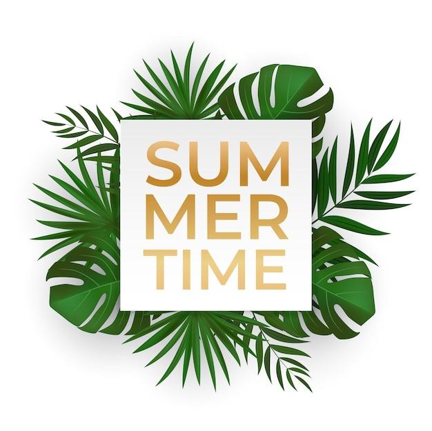 Natürlicher realistischer grüner palmblatt-tropischer hintergrund. sommerzeit. vorlage für werbung, web, social media und modewerbung.