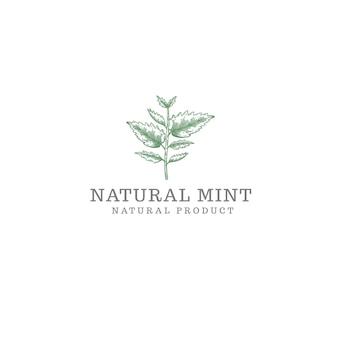 Natürliches minze-logo isoliert auf weiß