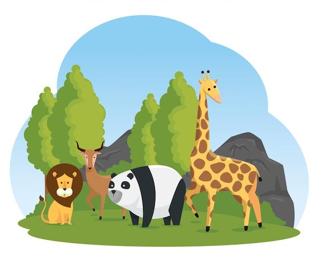 Natürliches safari-reservat für wildtiere