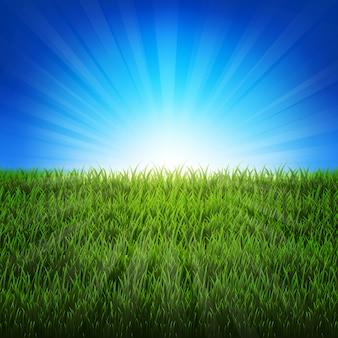 Natur-sonnendurchbruch-hintergrund mit grünem gras