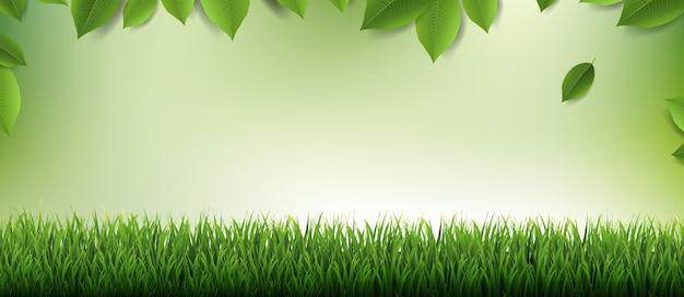 Natur verwischen hintergrund natur hintergrund mit blättern und gras