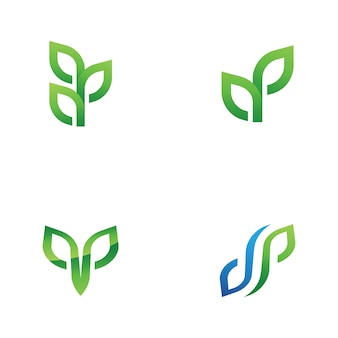Naturelement der grünen baumblattökologie